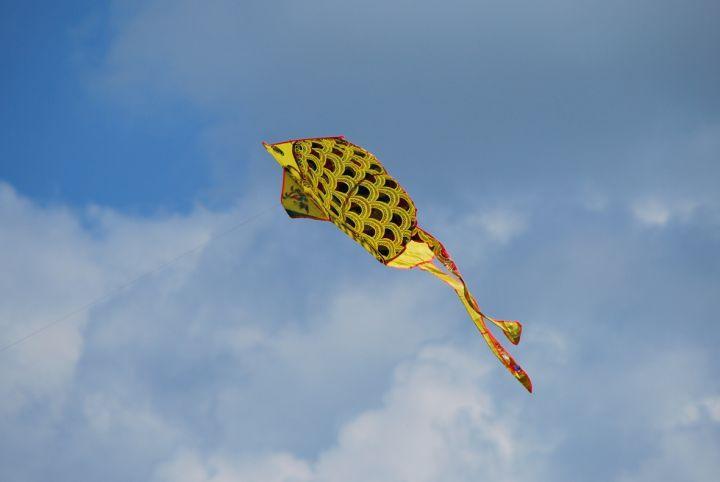 Dzień Dziecka z latawcami